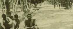 Timor postcard c. 1920s